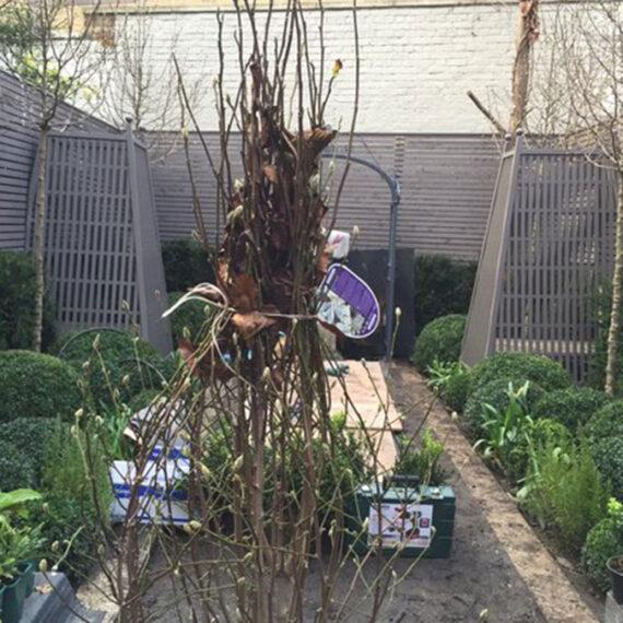 bespoke garden trellis