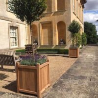 hertford planters planted with trees and flowers