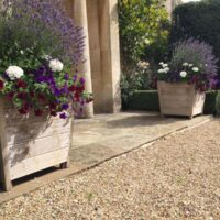 keble no2 planters planted with flowers and unpainted